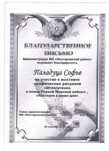 Достижения учеников аттестация 2017г 020