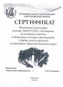 Достижения учеников аттестация 2017г 025
