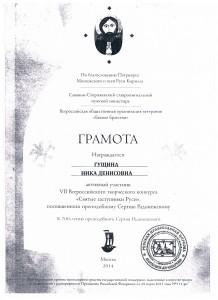 Достижения учеников аттестация 2017г 027