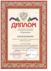 Достижения учеников аттестация 2017г 028