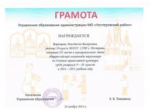 Достижения учеников аттестация 2017г 029