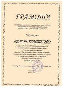 Достижения учеников аттестация 2017г 030