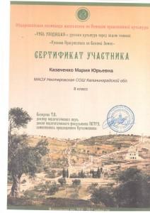 Казаченко Мария Юрьевна сертефикат участника