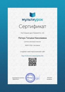 Сертификат Петкун Татьяна Николаевна (2)