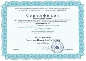 Соколова ИА 10 (8)