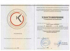 Удостоверение (2)