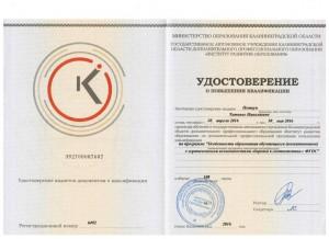 Удостоверение (3)