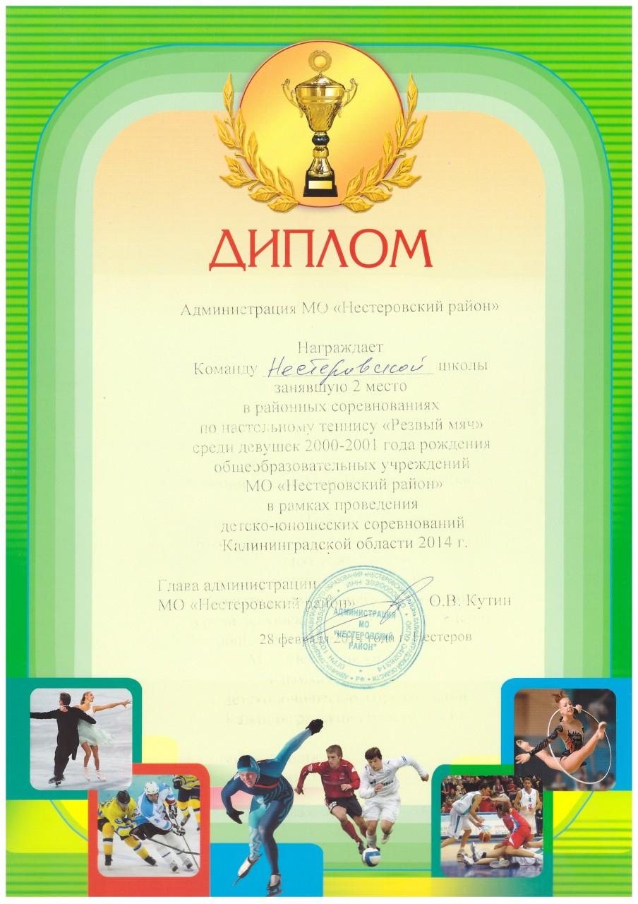 2013-14 резвый мяч девушки 2 место-min
