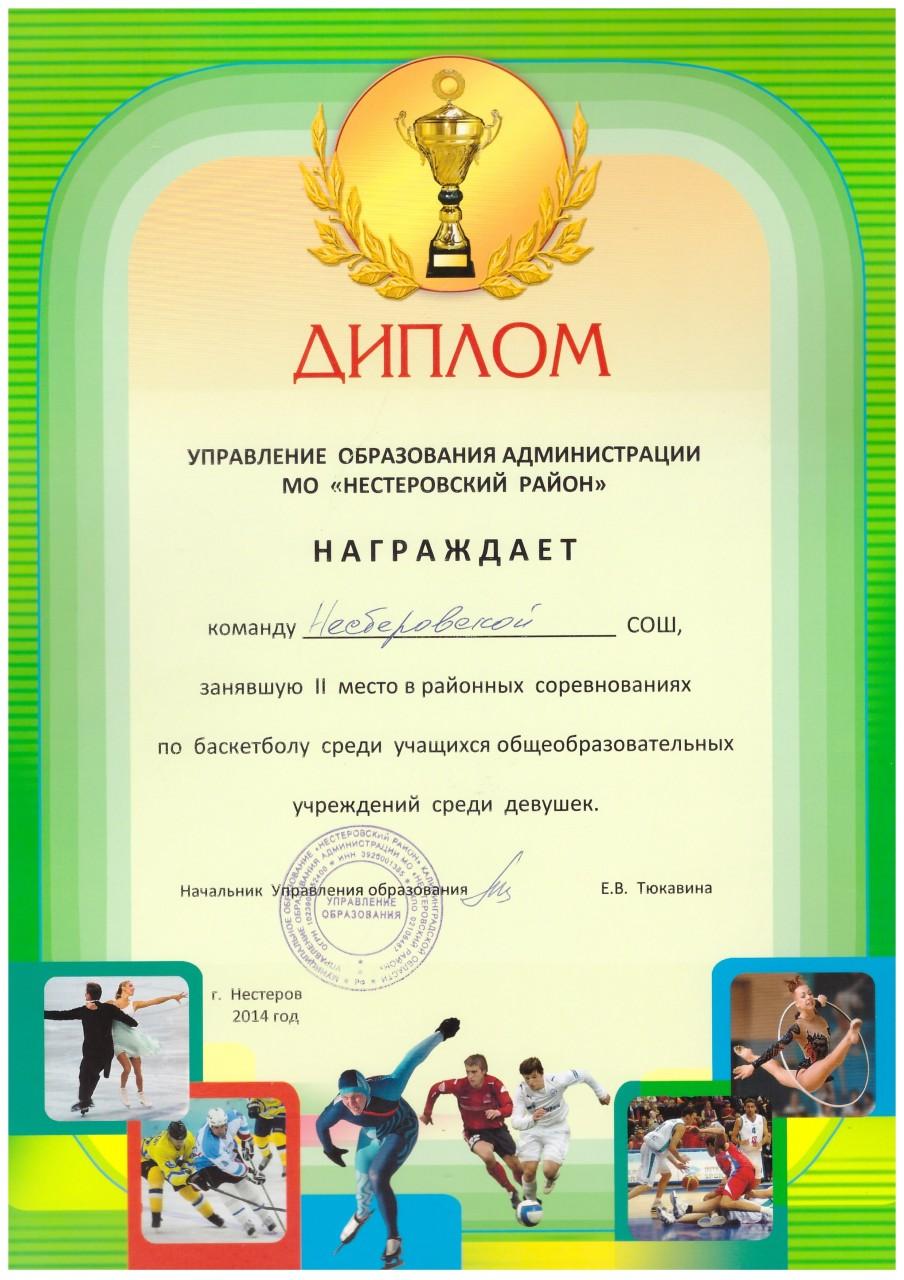 2014-15 баскетбол 2 место девушки-min