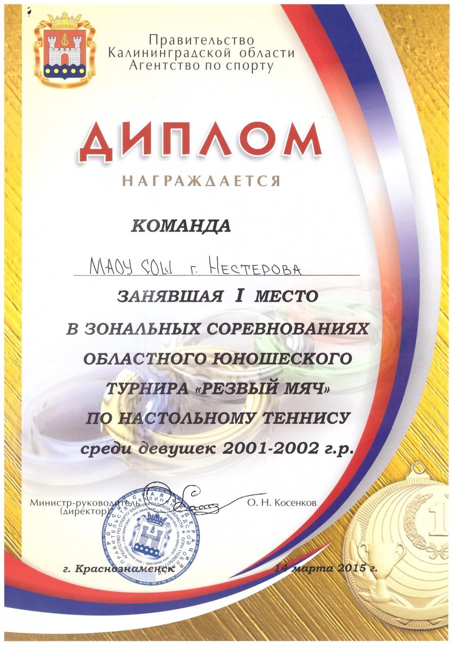 2014-15 диплом резвый мяч 1 место-min