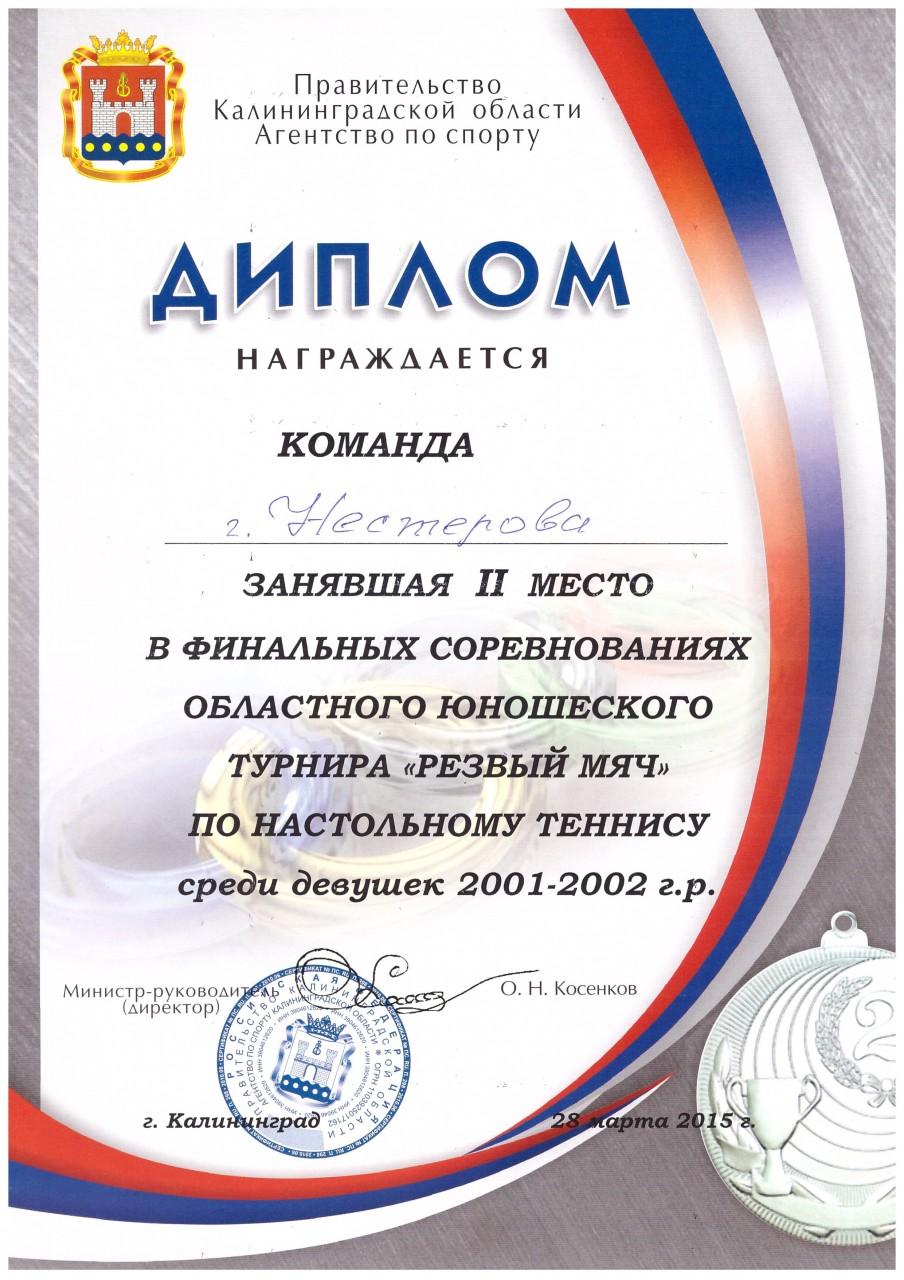 2014-15 резвый мяч девушки 2 место-min