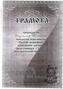img.7