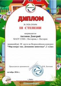 Антонов Дмитрий-3