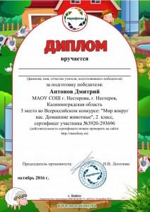 Антонов Дмитрий-5