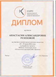 Резепова А.А, 16-17 - 0004