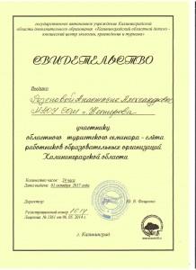 Резепова А.А. - 0001