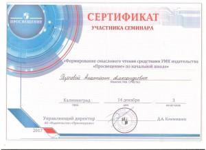Резепова А.А. - 0006
