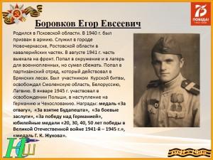 Боровков Е.Е.