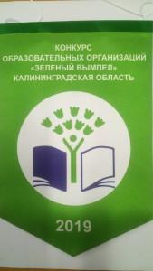 Зеленый вымпел 2019 (1)