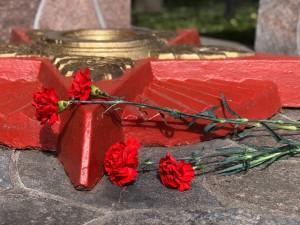 Дань памяти павшим воинам Великой Отечественной войны (1)