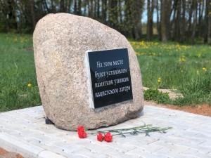 Дань памяти павшим воинам Великой Отечественной войны (4)