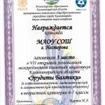 Диплом Эрудиты Балтики 3 место 2017