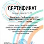 Сертификат участника апробации -2019