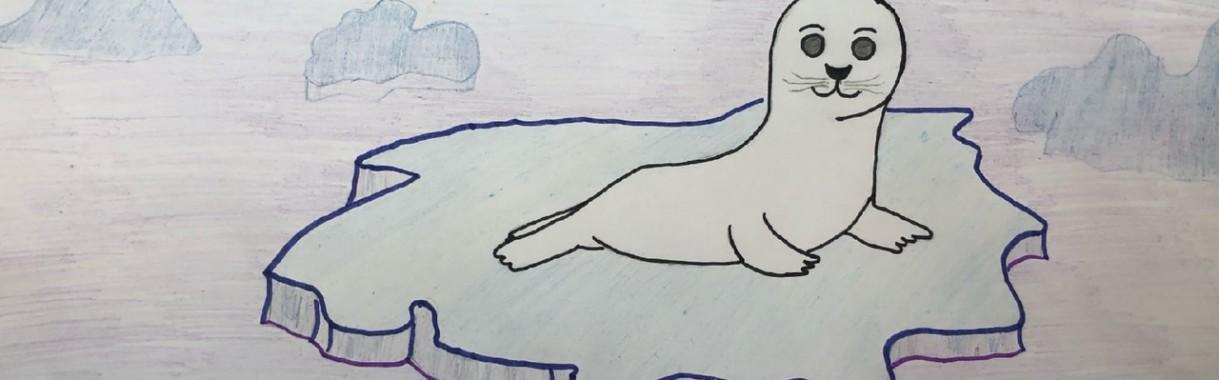 Внимание, тюлени!