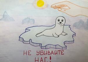 Внимание тюлени (1)