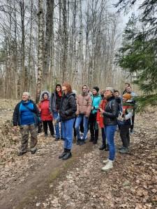 Здравствуй, весенний лес (4)
